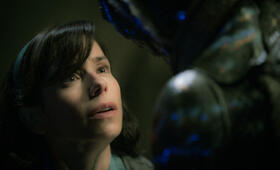 The Shape of Water mit Sally Hawkins - Bild 10