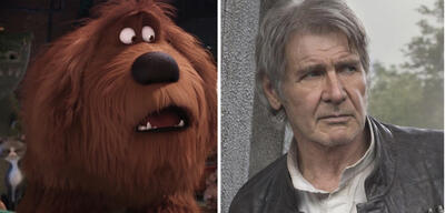 Harrison Ford in Pets