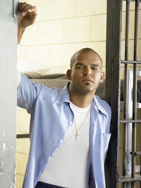 Staffel 1 Prison Break