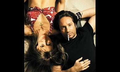 Californication - Bild 7