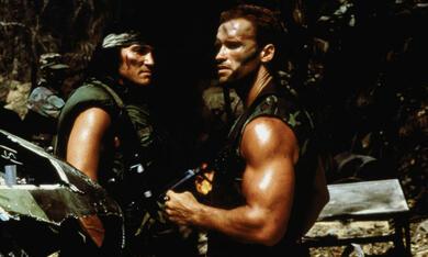 Predator mit Arnold Schwarzenegger - Bild 6