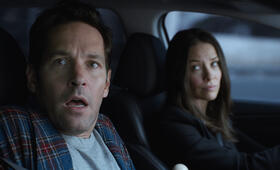 Ant-Man and the Wasp mit Paul Rudd und Evangeline Lilly - Bild 90