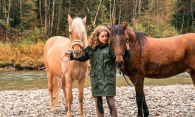 Reiterhof Wildenstein - Der Junge und das Pferd mit Klara Deutschmann - Bild 1