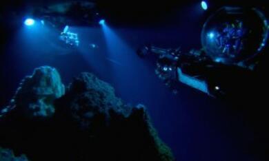 Aliens der Meere - Bild 9