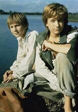 Tom Sawyers und Huckleberry Finns Abenteuer