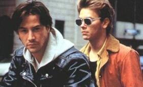 My Private Idaho - Das Ende der Unschuld mit Keanu Reeves und River Phoenix - Bild 88