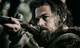 Leonardo DiCaprio in The Revenant - Der Rückkehrer - Bild 227