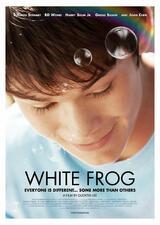 White Frog - Poster