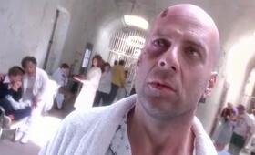 12 Monkeys mit Bruce Willis - Bild 248