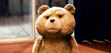 Bild zu:  Alles nicht so einfach als Bär...