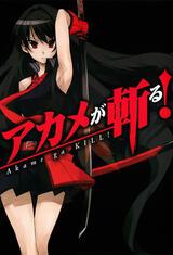 Akame ga Kill: Schwerter der Assassinen - Staffel 1 - Poster