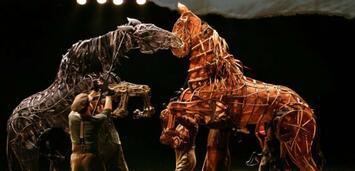 Bild zu:  War Horse als Theaterstück