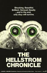 Die Hellstrom-Chronik - Poster