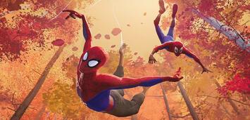 Bild zu:  Spider-Man: Into the Spider-Verse