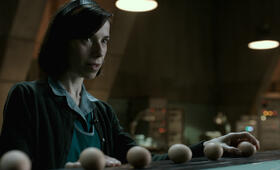 The Shape of Water mit Sally Hawkins - Bild 11