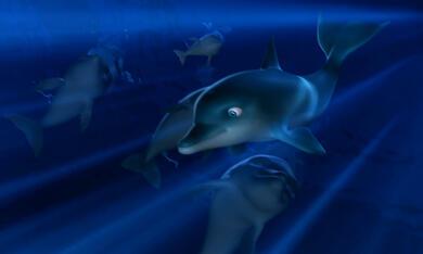 Der Delfin - Die Geschichte eines Träumers - Bild 1