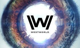 Westworld, Westworld Staffel 1 - Bild 106