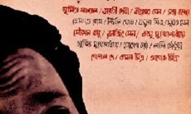 Nayak - Poster - Bild 4