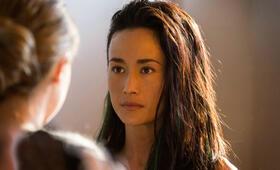 Die Bestimmung - Divergent mit Maggie Q - Bild 5