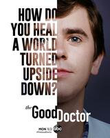 The Good Doctor - Staffel 4 - Poster