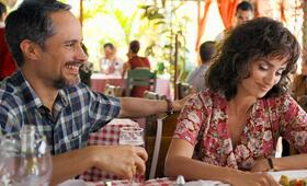 Wasp Network mit Penélope Cruz und Gael García Bernal - Bild 3