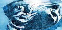 Bild zu:  The Thing - Das Steelbook-Cover