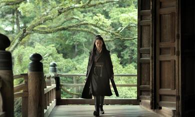 The Assassin mit Qi Shu - Bild 10