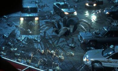 Arac Attack - Angriff der achtbeinigen Monster - Bild 5
