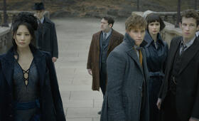 Phantastische Tierwesen: Grindelwalds Verbrechen mit Eddie Redmayne, Katherine Waterston, Dan Fogler, Callum Turner, Claudia Kim und William Nadylam - Bild 41