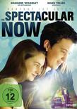 The spectacular now13