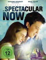 The Spectacular Now - Poster