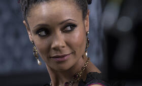 Westworld, Staffel 1 mit Thandie Newton - Bild 93
