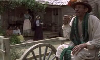 Roots: Die nächsten Generationen, Staffel 1 - Bild 5
