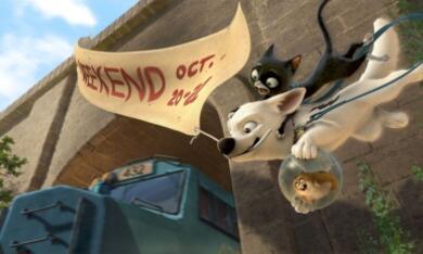 Bolt - Ein Hund für alle Fälle - Bild 4