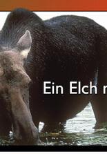 Ein Elch namens Erika