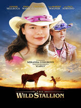 Das Geheimnis des Wilden Mustangs - Poster
