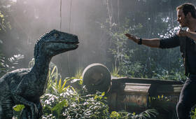 Jurassic World 2: Das gefallene Königreich mit Chris Pratt - Bild 1