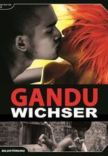 Gandu - Wichser