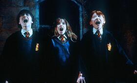 Harry Potter und der Stein der Weisen mit Emma Watson, Daniel Radcliffe und Rupert Grint - Bild 30