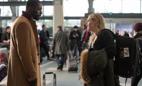 Zwischen zwei Leben - The Mountain Between Us mit Kate Winslet und Idris Elba - Bild 18