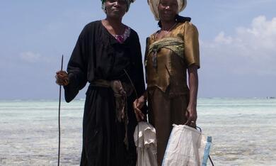 Über den Inseln Afrikas - Sansibar - Bild 1