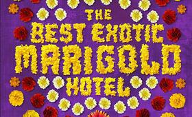 Best Exotic Marigold Hotel - Bild 17