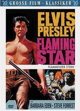 Flammender Stern - Poster