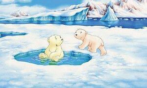 Der kleine Eisbär - Bild 4 von 5