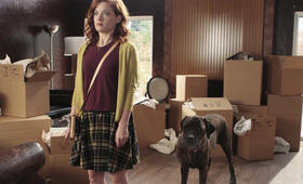Suburgatory Staffel 3 mit Jane Levy - Bild 56