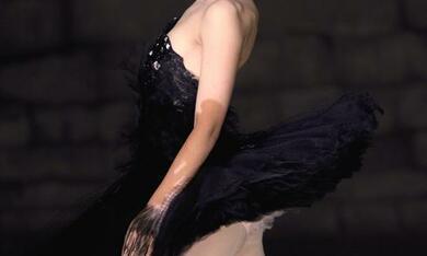 Black Swan - Photo1 - Bild 12