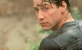 Gefährliche Brandung mit Keanu Reeves - Bild 214