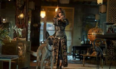John Wick: Kapitel 3 mit Halle Berry - Bild 9