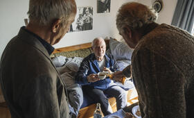 Zimmer mit Stall - Tierisch gute Ferien mit Friedrich von Thun, Sepp Schauer und Philipp Sonntag - Bild 4