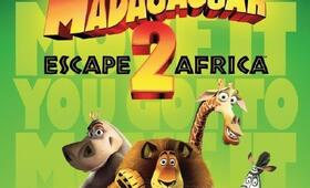 Madagascar 2 - Bild 15